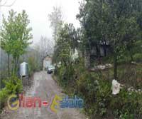 فروش ويژه خانه باغ جنگلي با سند ارتفاعات رودسر