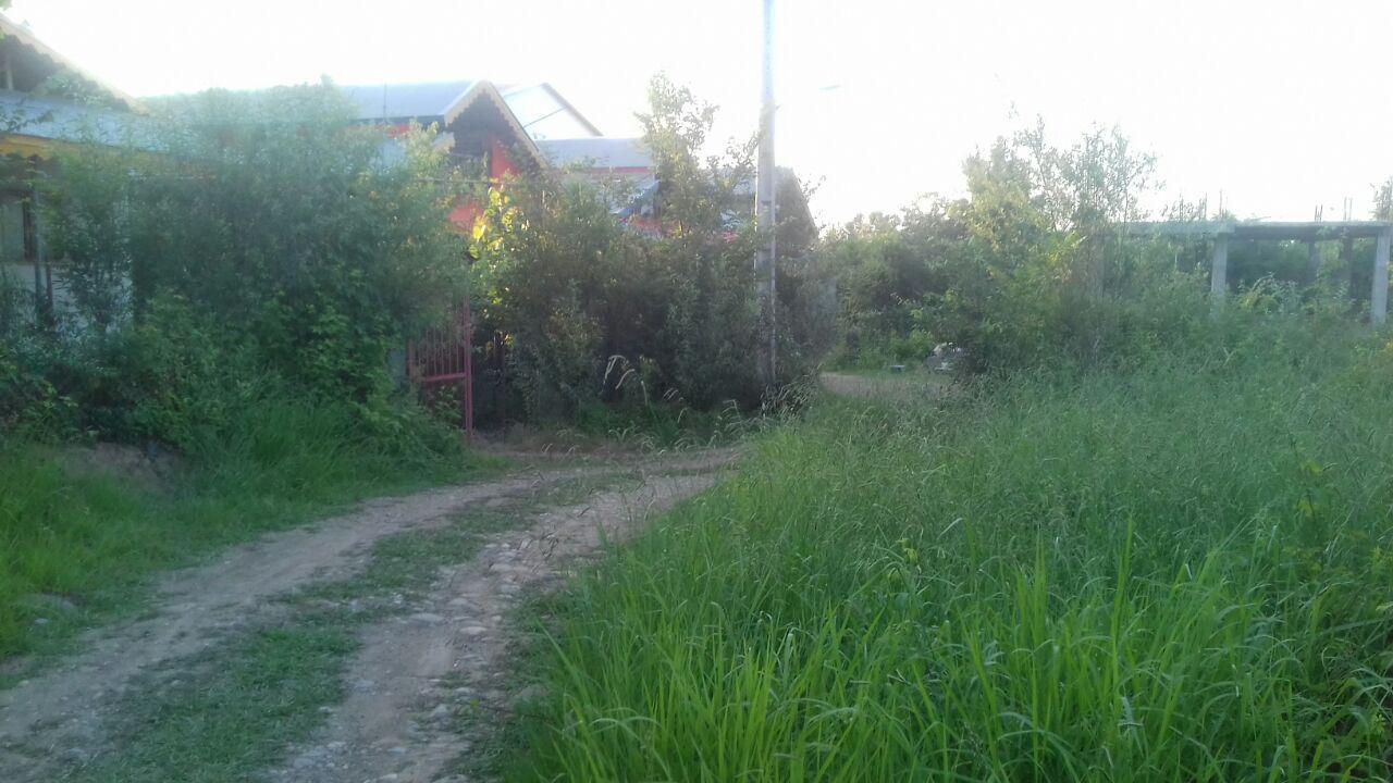 خرید زمین زیرقیمت در رانکوی املش