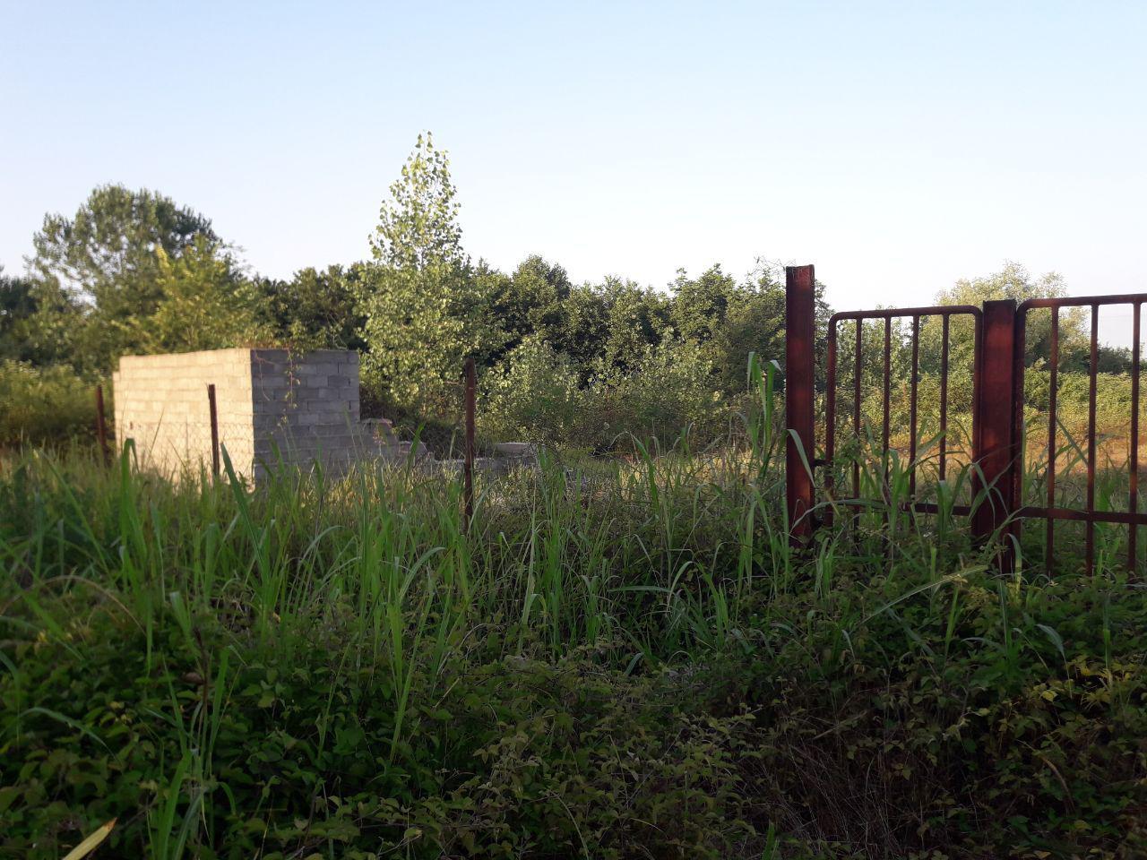 فروش زمین هکتاری محصور شده در رودسر