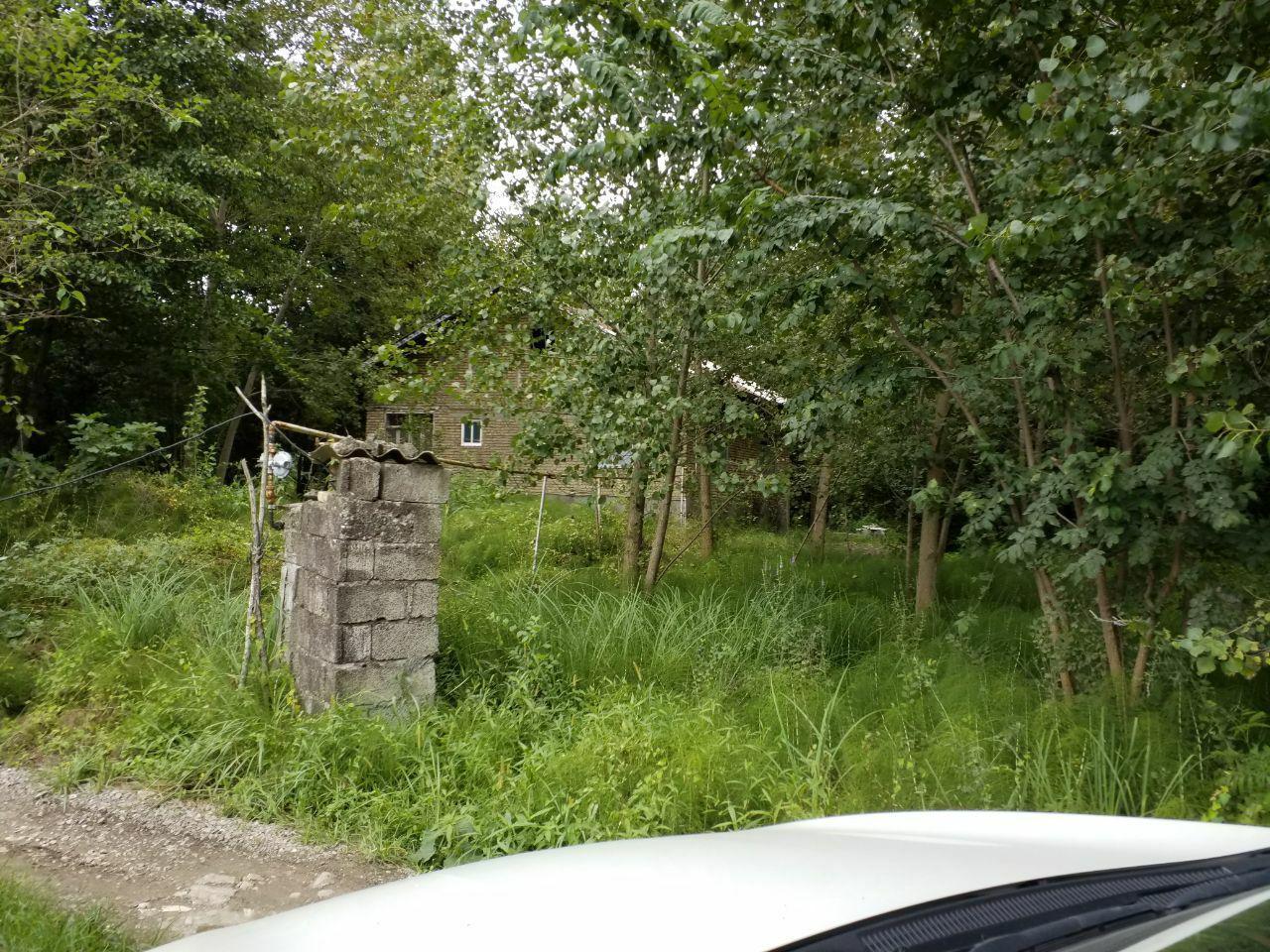 فروش خانه کرسی بلند با 5 هزار متر زمین لنگرود