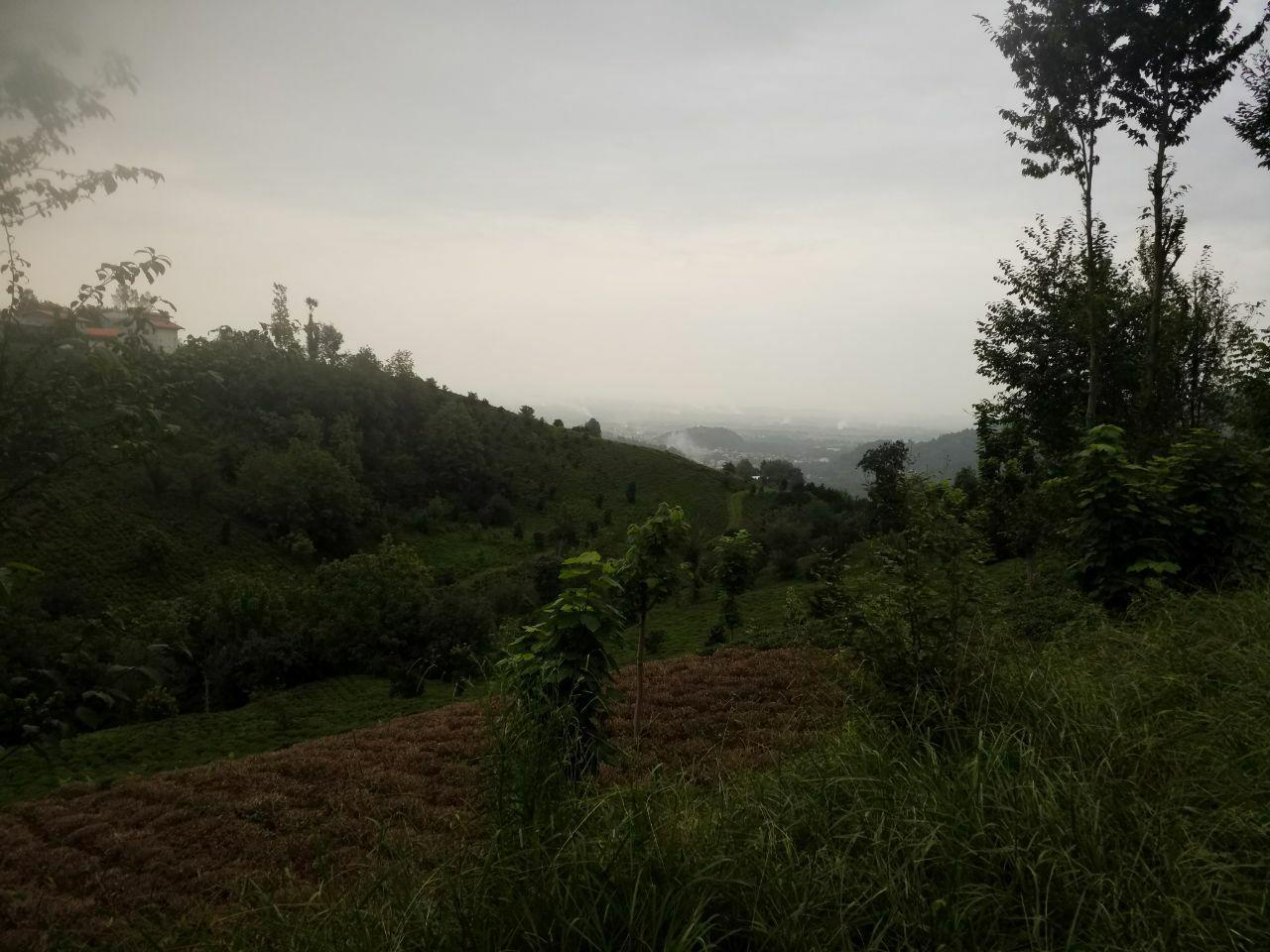 فروش زمین باغ 400 متری رانکوه