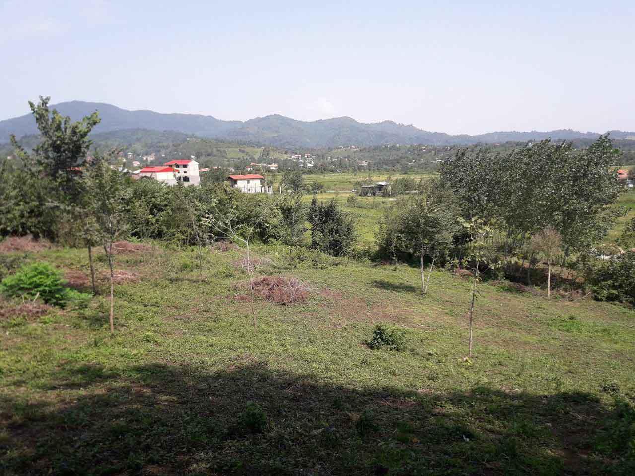 فروش زمین با پروانه 2000 متری اطاقور