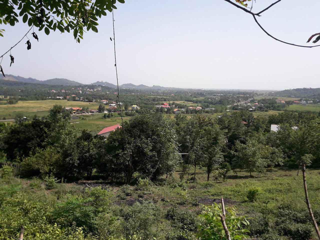 فروش زمین مسکونی 1500 متری در اطاقور