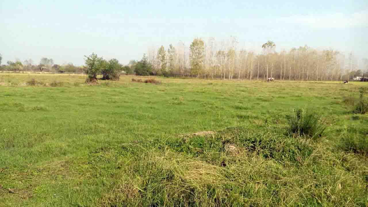 فروش یکباب خانه محوطه و ۴ هکتار زمین کشاورزی