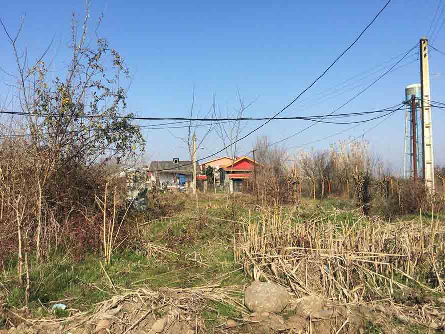 فروش زمین تجاری مسکونی 498 متر املش