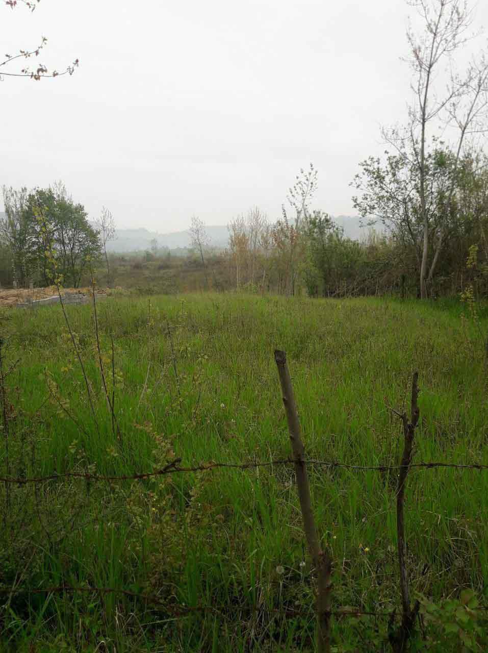 فروش زمین 1000 متری روستایی جنگلی اطاقور