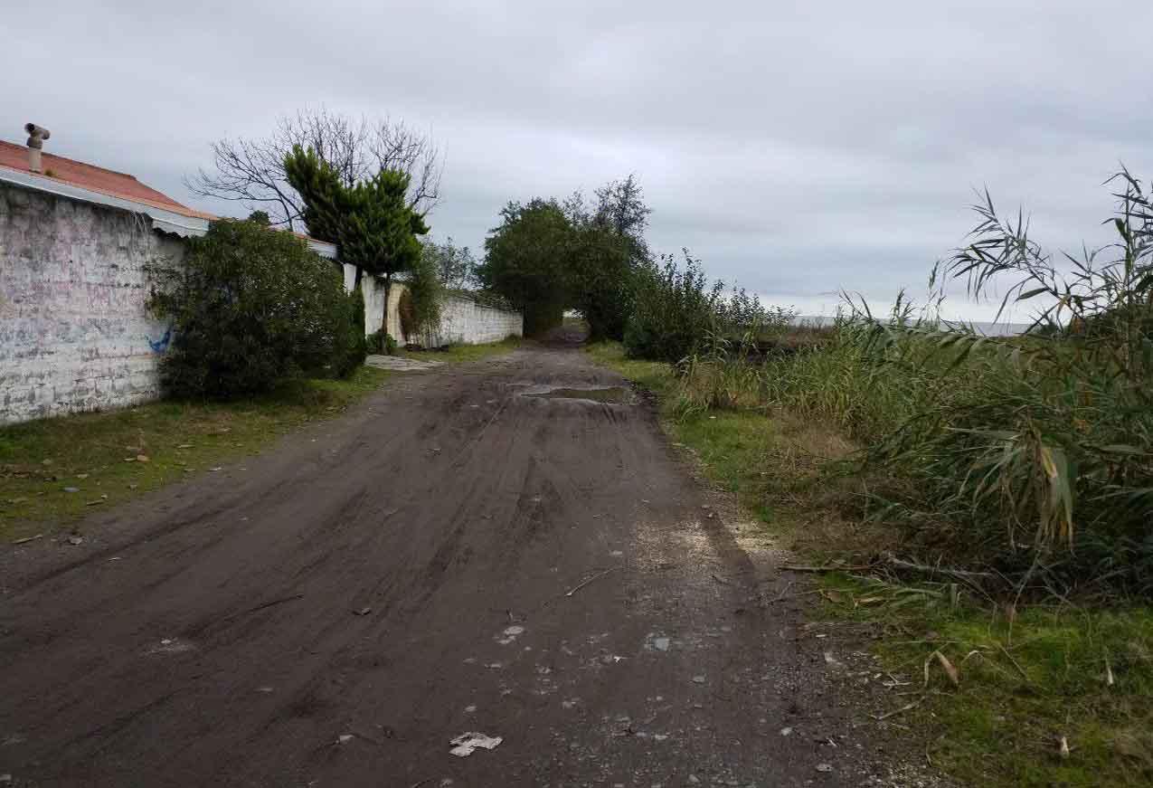 فروش زمین 800 متری بر دوم ساحل چمخاله