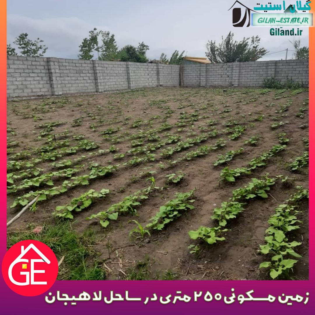 فروش زمین مسکونی 250 متری در ساحل لاهیجان