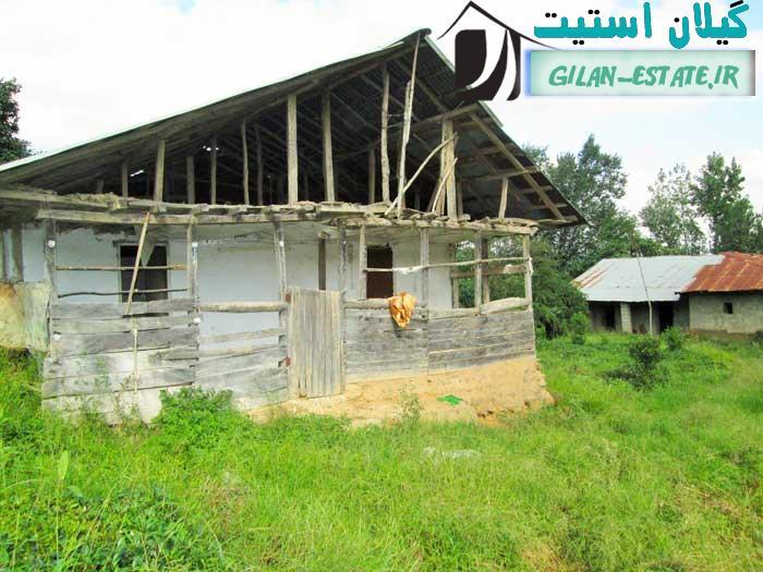 فروش فوری زمین هکتاری سند ششدانگ زیرقیمت شمال کد 135